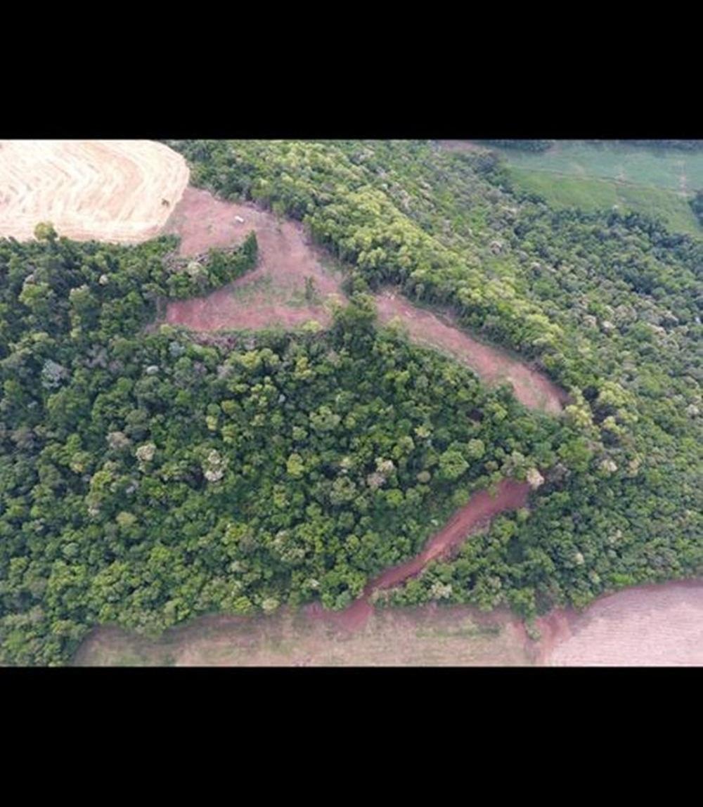 Patram localiza desmatamento irregular em Severiano de Almeida