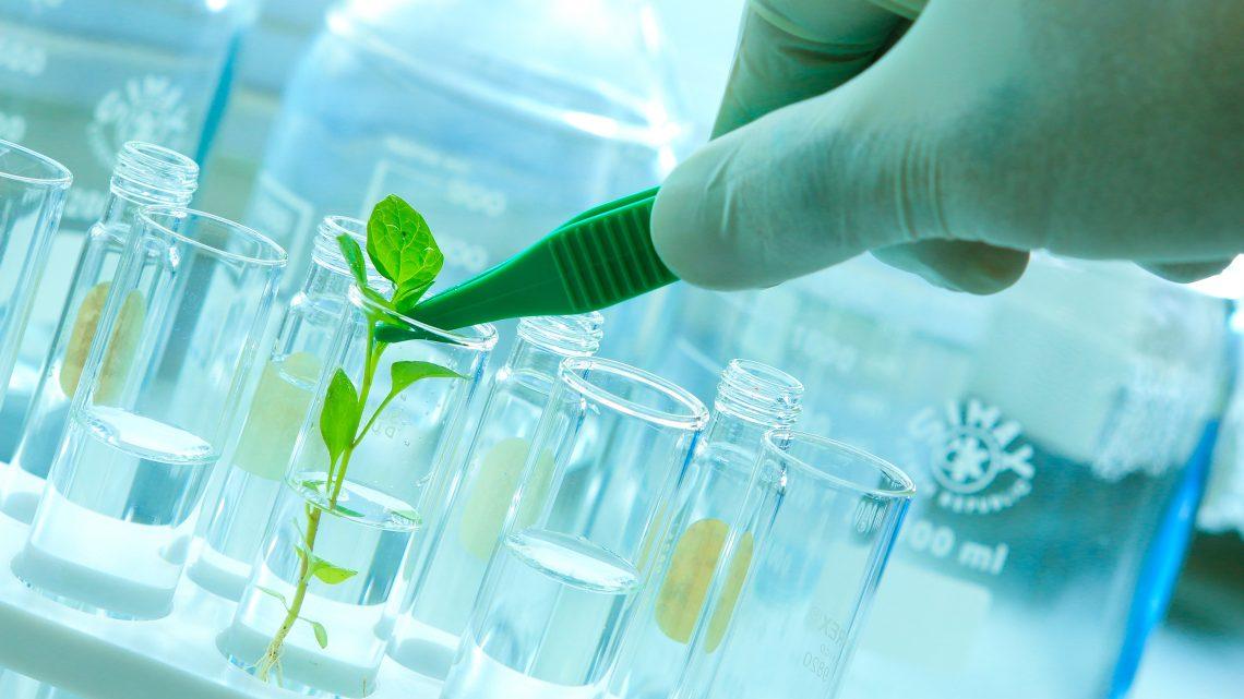 No Dia Mundial da Água: como a biotecnologia pode preservar esse recurso natural