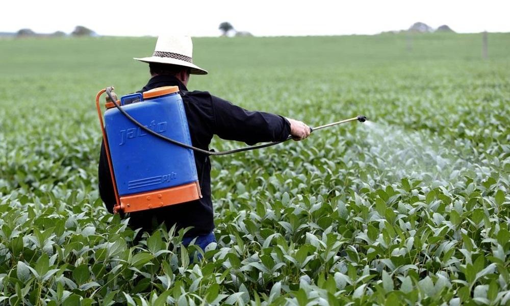 Ir para  <p><big>O <strong>Minist&eacute;rio da Agricultura</strong> autorizou a utiliza&ccedil;&atilde;o de 42 novos agrot&oacute;xicos no Brasil, ampliando o recorde de pesticidas liberados pelo governo federal...