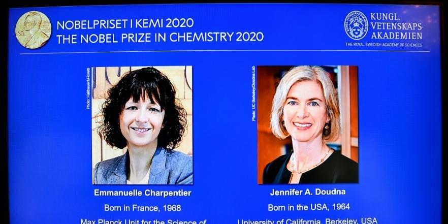Ir para  <p>Duas geneticistas, a francesa Emmanuelle Charpentier e a americana Jennifer Doudna, s&atilde;o as vencedoras do Pr&ecirc;mio Nobel de Qu&iacute;mica em 2020 por suas pesquisas sobre as &quot;tesouras...
