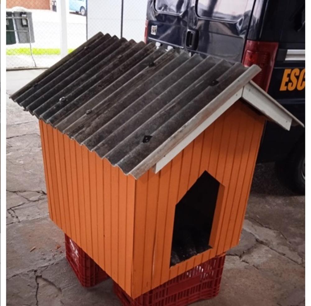 Ir para  <p><big>A SOS Animais Erechim, em parceria com o Pres&iacute;dio Estadual de Erechim e com o curso de Arquitetura e Urbanismo da Universidade Regional Integrada do Alto Uruguai e das Miss&otilde;es (URI/Erechim)...